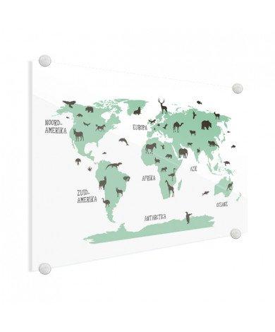 Dieren groen plexiglas